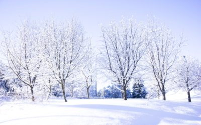 4 Ways to Stay Healthier This Winter